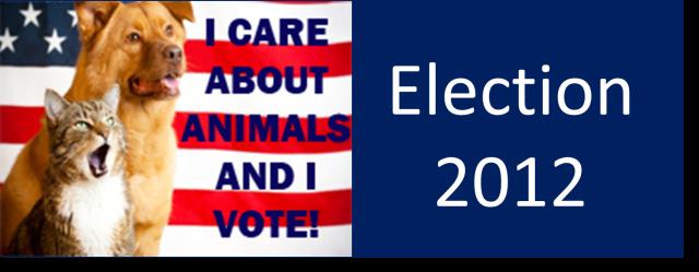election 21