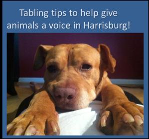 tabling tips