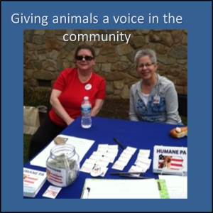 Elissa and Ginnie  giving animals a voice in their community