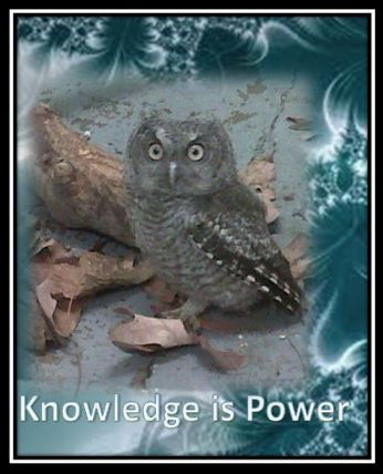 knowledge 3