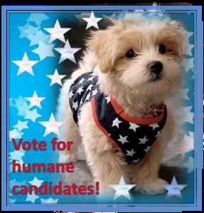 humane candidates2