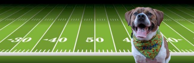 touchdown3