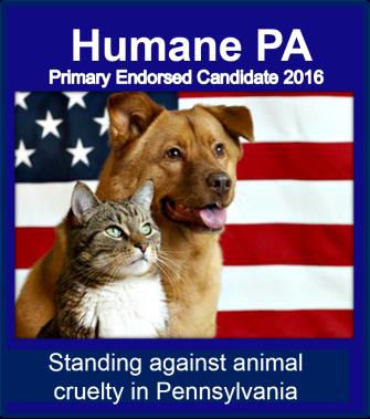 Primary endorse 2016