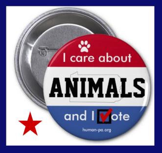 button vote