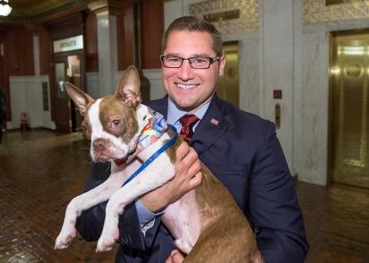 Humane PA | Pennsylvania Puppy Retail Sales Bill